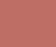 Benjamin Moore's Persimmon 2088-40 a pink red